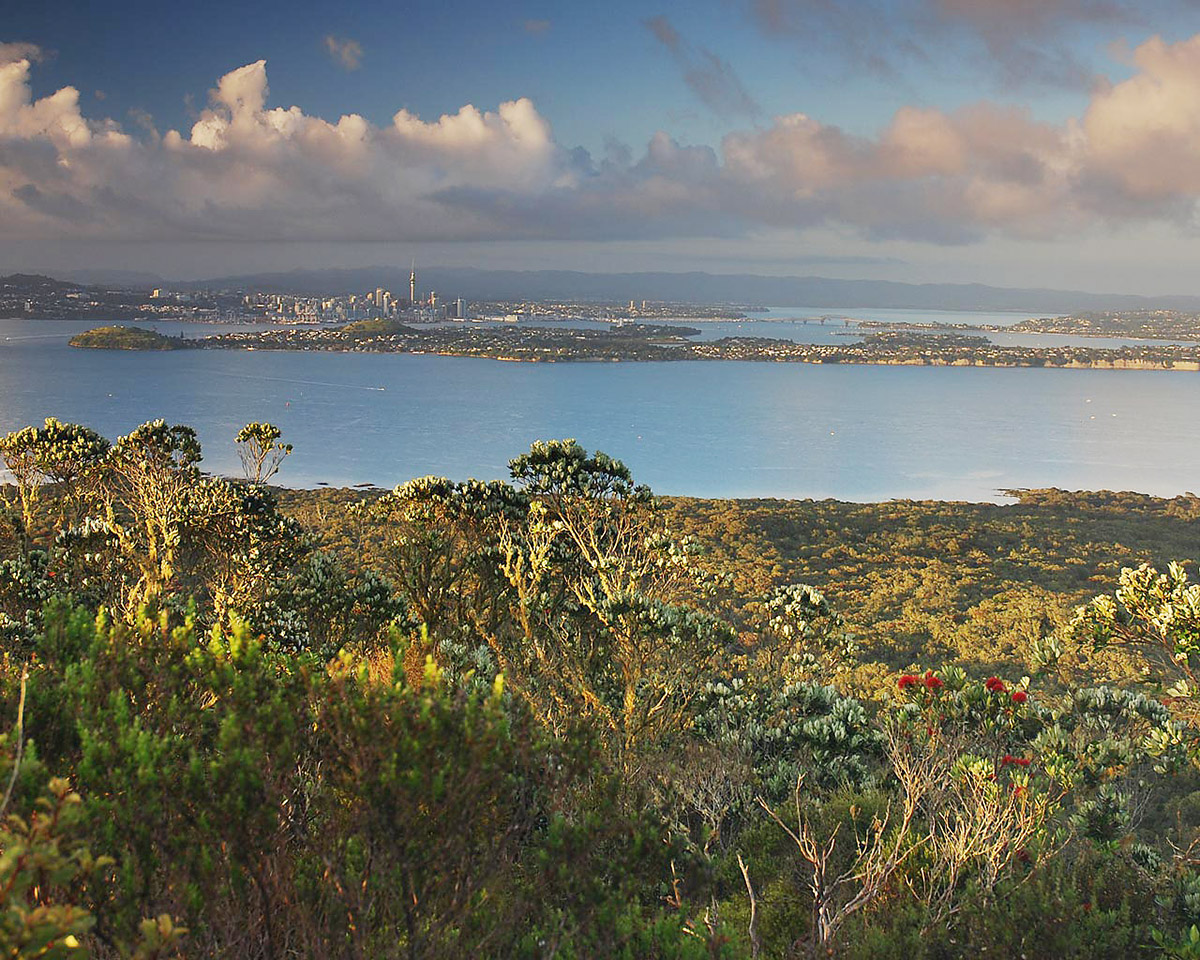 Rangitoto summit view to Auckland city - Photo by Art Polkanov